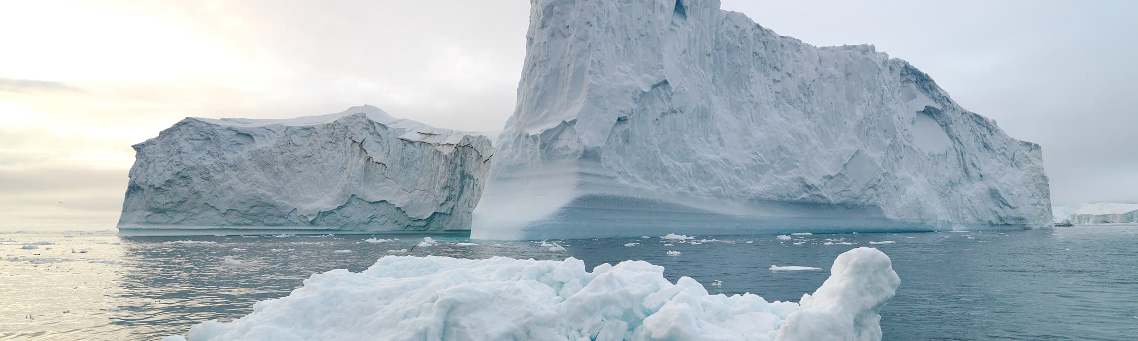 Scientists Utilize Satellite Technology to Track Icebergs in The Arctic Thumbnail